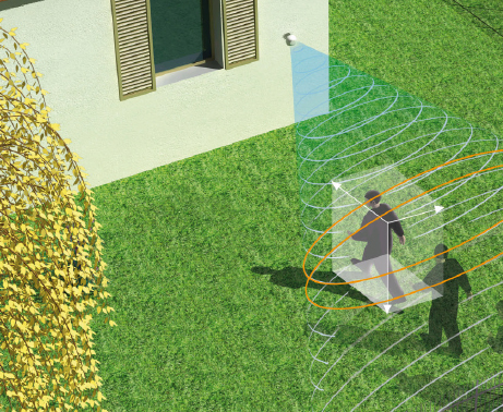 Field detection
